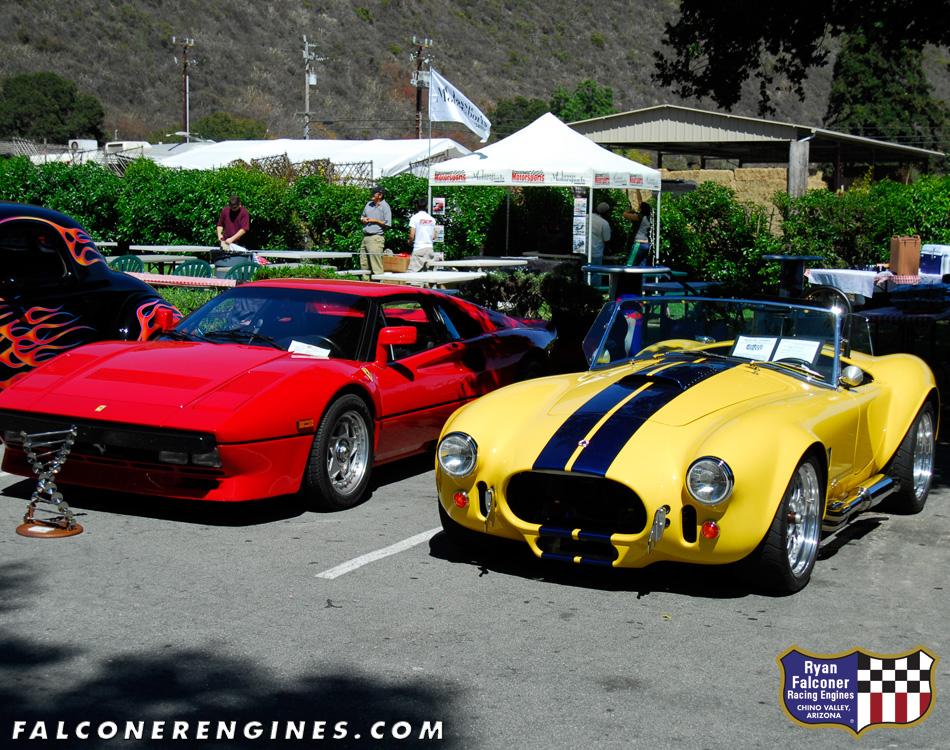 Irl on Shelby Cobra V12